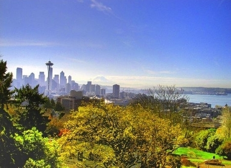 Seattle Building Massive Edible Forest Filled with Free Food | The World in Transition | Scoop.it