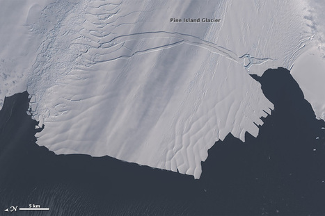 Global Warming Effect: Major Iceberg Cracks off Pine Island Glacier | Amazing Science | Scoop.it
