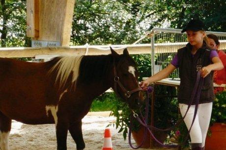 Une nouvelle discipline équestre | Cheval et sport | Scoop.it