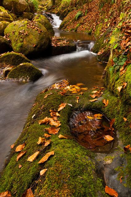 Ruisseau d'Ardengost | Vallée d'Aure - Pyrénées | Scoop.it
