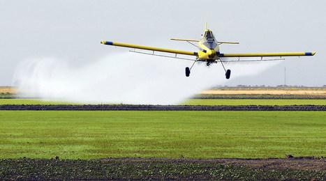 70 % des aliments consommés au Brésil contiennent des pesticides | Biodiversité & Relations Homme - Nature - Environnement : Un Scoop.it du Muséum de Toulouse | Scoop.it