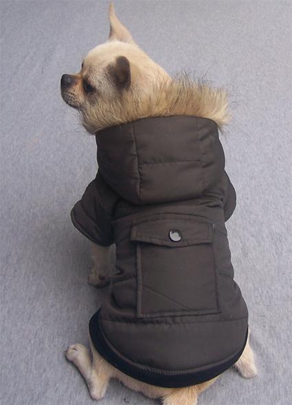Coffee - Warm Dog Coat – PetSuperDeal.com | petsuperdeal | Scoop.it