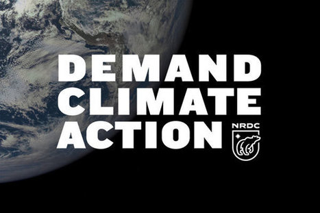 Tell World Leaders: Deliver on Climate Commitments | EcoAction | Scoop.it