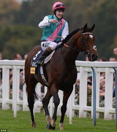 Frankel's foals ready to be sold at auction | Horse Racing News | Scoop.it