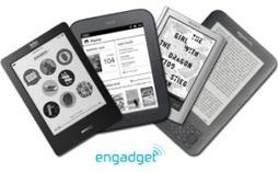 Four Librarians, Four E-readers, Two Years | Artículos, monografías y vídeos sobre el libro electrónico. Documenta 40 | Scoop.it