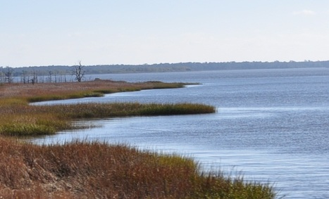American Rivers Most Endangered Rivers | Explore Pawleys Island | Scoop.it