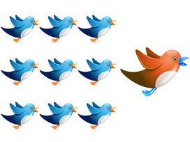 Twitter : entre idées reçues et peur de l'inconnu   Digital Experiences by David Labouré   Scoop.it