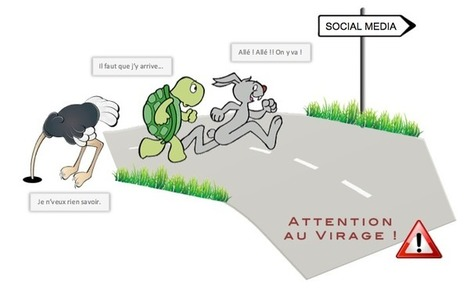 Community Management : vous êtes un Client plutôt Lièvre, Autruche ou Tortue ? | Community Management, Webmarketing | Scoop.it
