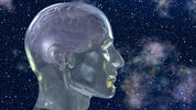 Is The Human Brain Hardwired for God? | Lived Time | Scoop.it
