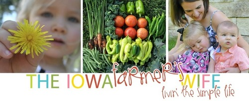The Iowa Farmer's Wife: 60 Ways to Make {Reading} Fun