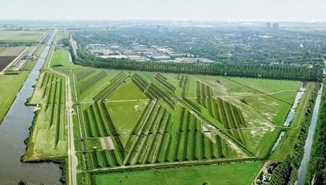 Lo que necesitan los aeropuertos para reducir el ruido generado es un buen jardinero | Educacion, ecologia y TIC | Scoop.it