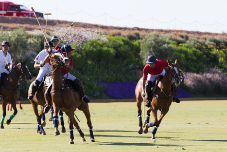 Marrakech opens its first polo field | Arts & luxury in Marrakech | Scoop.it