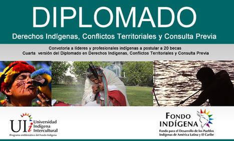 Oferta de Becas: Diplomado Internacional en Derechos Indígenas, Conflictos Territoriales y Consulta previa en Chile | Fondo Indigena | Genera Igualdad | Scoop.it