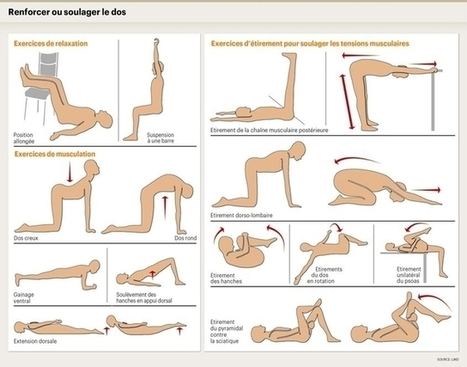 Le mal de dos résulte souvent d'un problème musculaire - Le Matin Online   yoga iyengar   Scoop.it