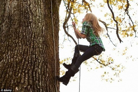 Children thrive on risky play: Climbing trees improves creativity | The Brain and Learning | Scoop.it