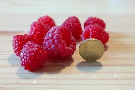 Comment Produire Notre Nourriture Sans Travailler | Au jardin! | Scoop.it