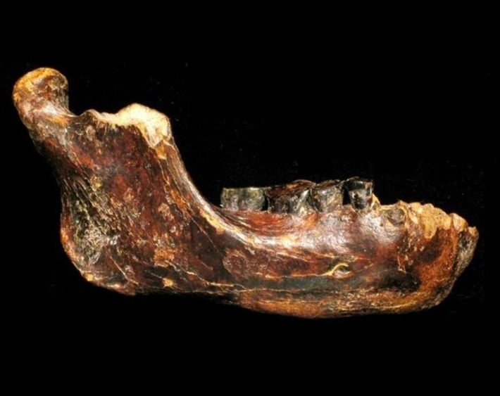 Ancient human fossil from Taiwan could be new primitive species | The Archaeology News Network | Kiosque du monde : Asie | Scoop.it
