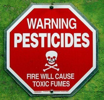 Agriculture : les pesticides sont-ils plus dangereux que prévu ? | YourCoach | Scoop.it