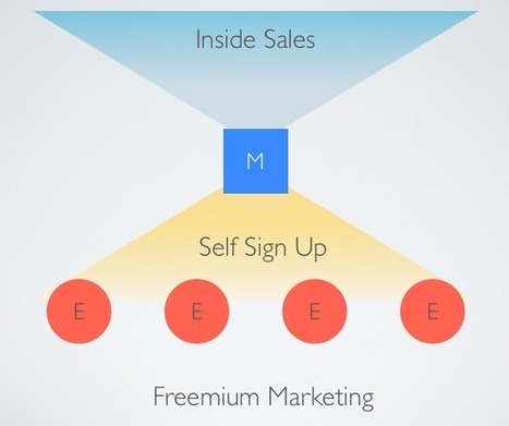 Crafting a Pricing Plan to Maximize Freemium Growth | Startups&Entrepreneuriat | Scoop.it
