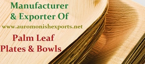 Auro Monish Exports - Our Gallery                                                                                                   | Areca Palm Leaf Plates - Auro Monish Exports - Go green Areca | Scoop.it