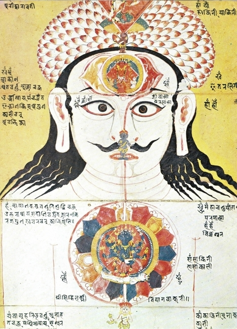 The real story on the Chakras | meditation, spirituality and meaning | Scoop.it