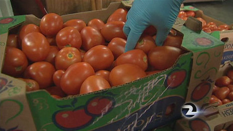 Pesticide violations rampant in California produce | Healthy Recipes and Tips for Healthy Living | Scoop.it