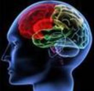 Musique et cerveau | Muzibao | Scoop.it