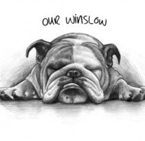 Awesome Pet Portrait Drawn/Painted From A Photo - Christmas Gifts | Christmas Gifts For Every Occasion | Scoop.it