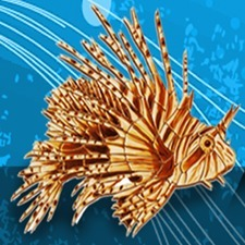 Kill the Lionfish | All about water, the oceans, environmental issues | Scoop.it