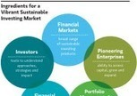 Sustainable Investing Imperative Opportunity | Inclusive Business and Impact Investing | Scoop.it