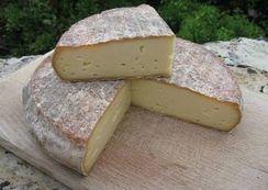 Du Saint-Nectaire rappelé pour cause de listéria | The Voice of Cheese | Scoop.it