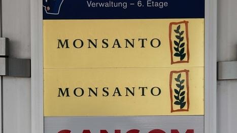 Bayer va-t-il ouvrir en grand les portes de l'Europe à Monsanto? | Chronique d'un pays où il ne se passe rien... ou presque ! | Scoop.it
