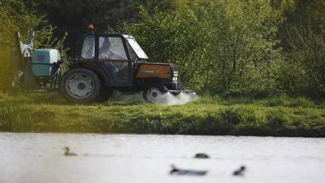 Alerte sur les taux de pesticides en milieu aquatique | EntomoNews | Scoop.it