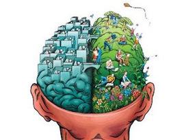 Hipótesis: Neuroeducación basada en pseudociencia (2º parte) | herramientas y recursos docentes | Scoop.it