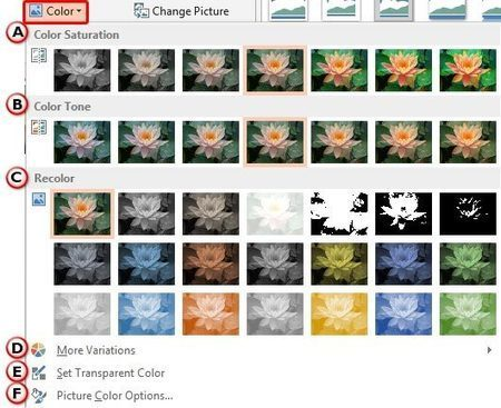 Changing Color of Pictures in PowerPoint 2013 | PowerPoint Tutorials | Scoop.it