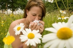 Fossil-Fueled Heat Wave Spurs Record Allergy Season | Coffee Party Science | Scoop.it