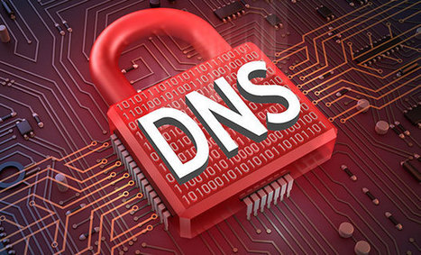 Secure Domains: The DNS Security Debate | Web hosting | Scoop.it