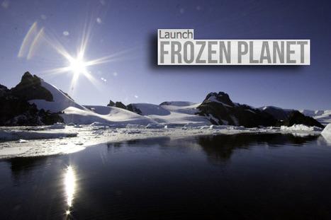 Frozen Planet: Explore the polar regions -superbe | Enseigner l'Histoire-Géographie | Scoop.it