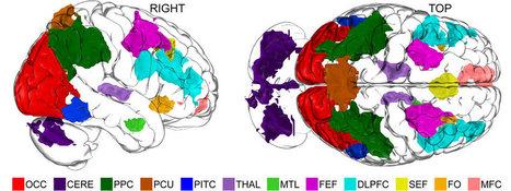 Una red neuronal se activa por todo el cerebro cuando pensamos en cosas que no existen | Emotive Psicología: Relaciones | Scoop.it