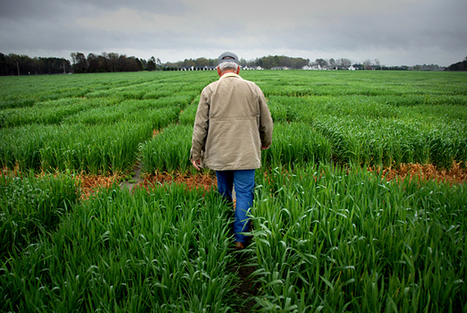 Farmers skeptical about validity of climate change | Sustain Our Earth | Scoop.it