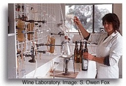 Featured Project: Methods of Artificially Aging RedWine | #SciFund | Scoop.it