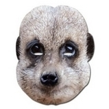 Meerkat Celebrity Mask | Fancy Dress Ideas | Scoop.it