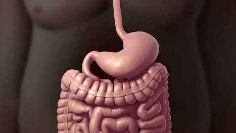 Benefits of Sleeve Gastrectomy Surgery : Obese Patients | Weight Loss Surgery | Scoop.it