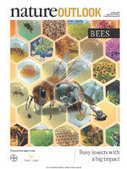 Bees | collectibles from scoop.it | Scoop.it