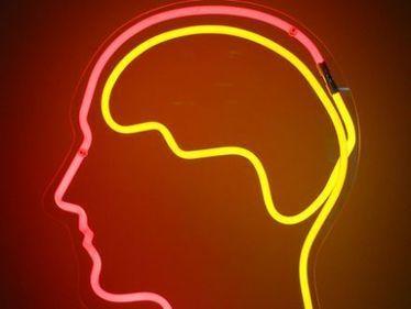Neurowissenschaften - Verdrängung ist kein Hirngespinst | Persoenlichkeit & Kompetenz | Scoop.it