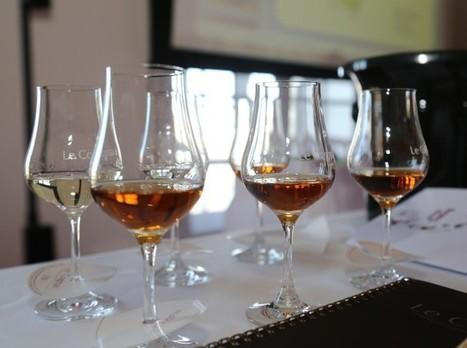 Bordeaux Tasting   Master Class : le Cognac en 10 questions - Terre de Vins   Le Cognac et son vignoble   Scoop.it