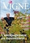 Enfin clarifiée ! | vitisphere | Actualités e-tourisme et oenotourisme | Scoop.it