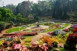 Chiang Rai Package01 : 2 Days Chiang Rai Tour Package | Chiang Mai Tourist Attractions | Scoop.it