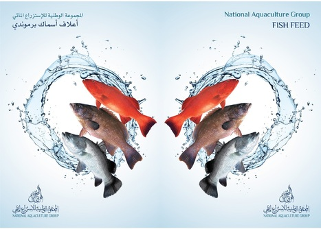 """""""Safe feed for save food"""" 