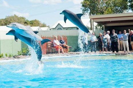 Spin-off for Coffs Coast tourism in Destination NSW spending | Australian Tourism Export Council | Scoop.it